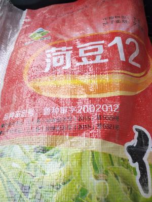 这是一张关于荷豆12 生大豆 1等品的产品图片