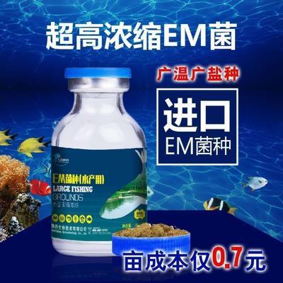 河南省开封市开封市微生物饲料添加剂