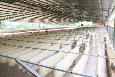 广西壮族自治区玉林市兴业县米粉