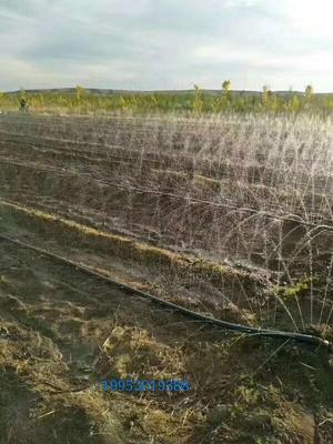 这是一张关于滴灌喷灌的产品图片