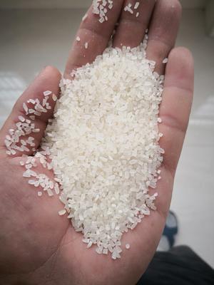 湖北省荆州市监利县碎米 绿色食品 中稻 一等品