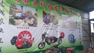陕西省渭南市蒲城县打药车