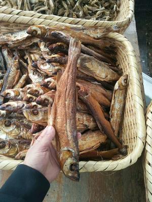 湖南省郴州市资兴市鱼干类
