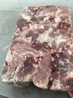 山东省临沂市河东区猪肉类 生肉
