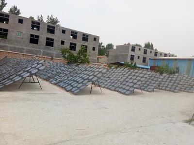 河南省周口市郸城县粉皮