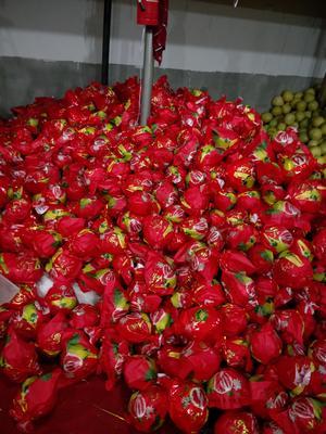 湖南省常德市澧县红心柚 2斤以上