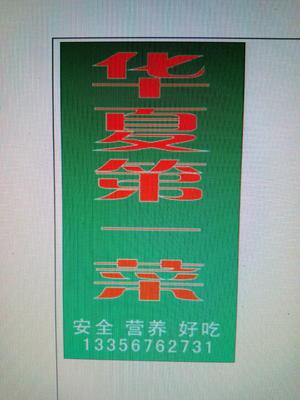 山东省潍坊市寿光市小黄瓜 18cm以下 干花带刺