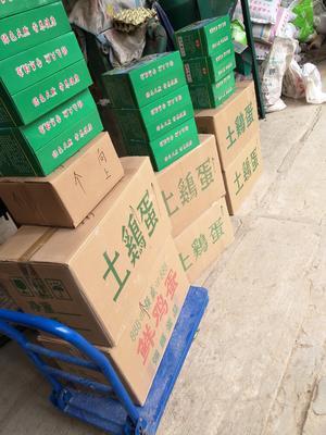河南省商丘市梁园区绿壳鸡蛋 食用 箱装