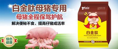 河南省新乡市原阳县混合型饲料添加剂