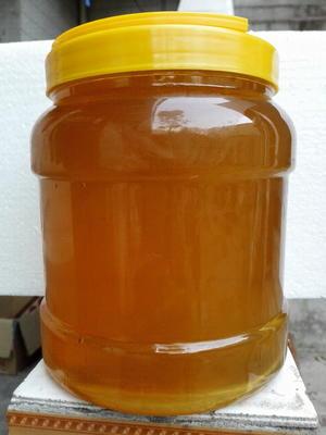 河南省许昌市禹州市荆条蜜 桶装 98% 2年以上