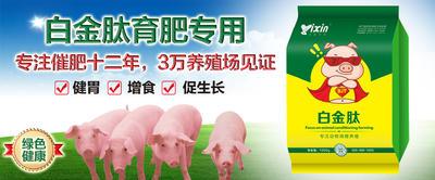 河南省新乡市原阳县微生物饲料添加剂