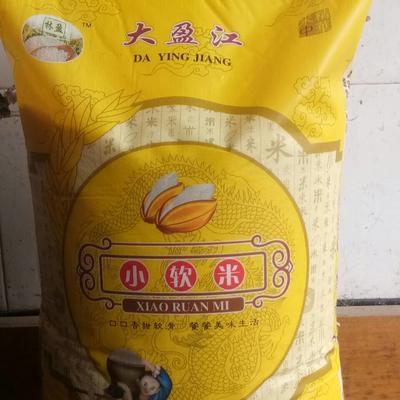 云南省德宏傣族景颇族自治州盈江县云南软米 有机大米 早稻 一等品