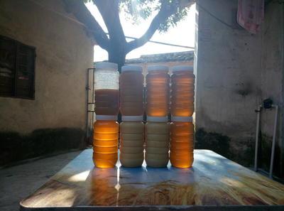 广东省东莞市东莞市土蜂蜜 塑料瓶装 98% 1年