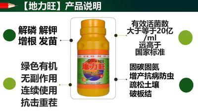 山东省潍坊市寒亭区复合微生物菌剂