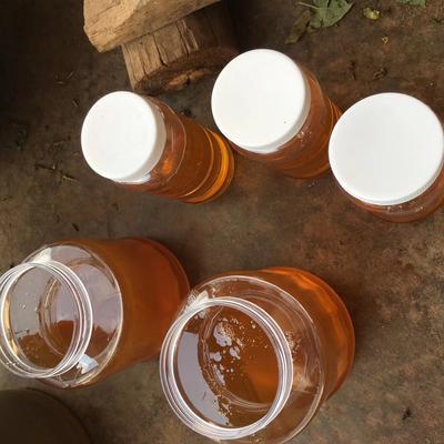 云南省普洱市澜沧拉祜族自治县土蜂蜜 塑料瓶装 100% 2年