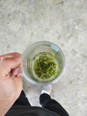 四川省雅安市天全县高山绿茶 盒装 二级