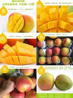 云南省玉溪市元江哈尼族彝族傣族自治县苹果芒 4两以上