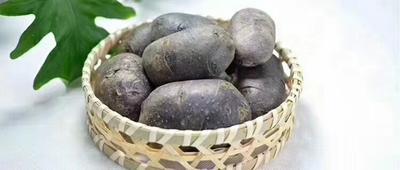 贵州省遵义市红花岗区黑土豆 1两以上