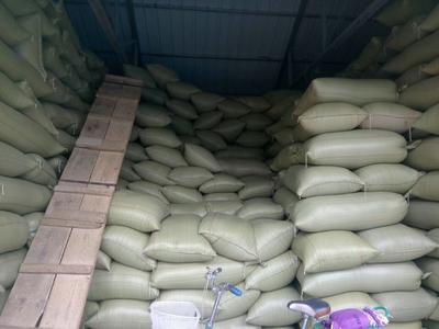这是一张关于混合小麦的产品图片