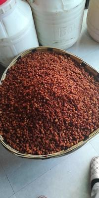 贵州省毕节市织金县猪肉类 简加工