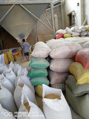 这是一张关于糠麸类饲料的产品图片