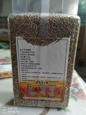 甘肃省白银市平川区白藜麦