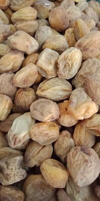 新疆维吾尔自治区喀什地区麦盖提县色买提杏 40-45mm