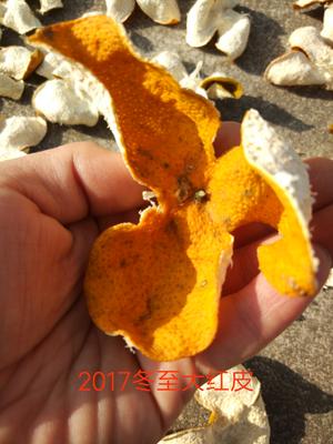 广东省江门市新会区新会陈皮