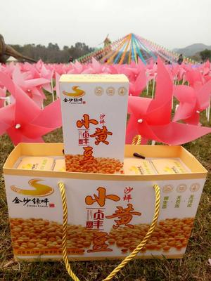 贵州省黔西南布依族苗族自治州贞丰县黄豆种子 ≥95% ≥99.9% 原种 ≤7%