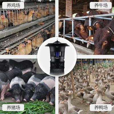 江西省吉安市永新县灭虫灯
