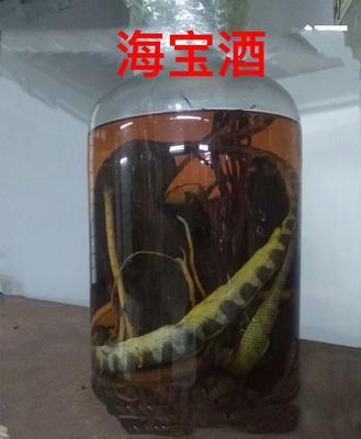 广东省潮州市饶平县海龙