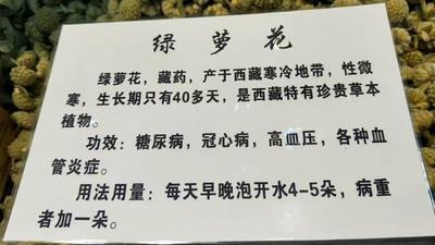 青海省西宁市城东区绿萝
