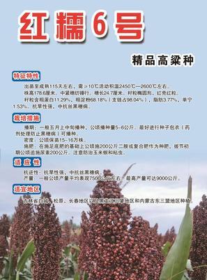 黑龙江省牡丹江市东宁县红糯5号 霉变 ≤1% 1等品
