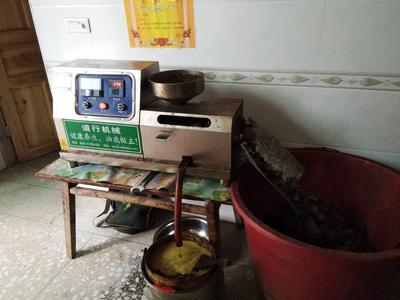 江西省萍乡市上栗县自榨纯菜籽油 4.5-5L