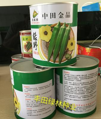 水果秋葵种子 杂交种