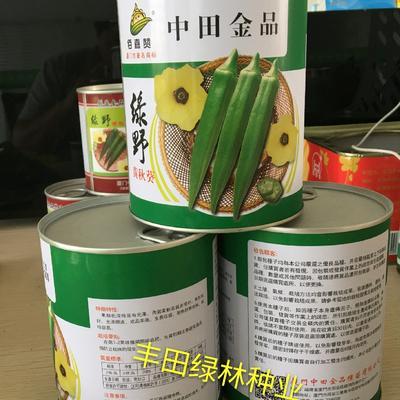 水果秋葵种子 日本进口杂交水果秋葵,深绿有光泽,商品性好,抗病,耐热,耐寒
