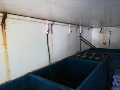 湖南省常德市鼎城区不规格手工塑料容器