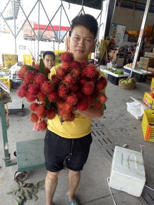 广西壮族自治区百色市靖西县越南红毛丹 2cm以上