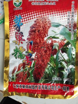 安徽省淮南市凤台县红缨子高粱 霉变 ≤3% 1等品