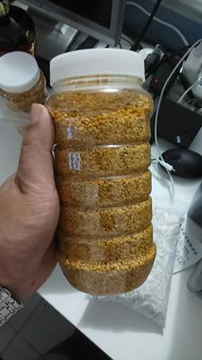 河南省信阳市商城县混合蜂花粉 18-24个月