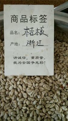 河北省保定市安国市橘核