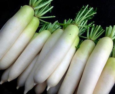 辽宁省锦州市凌海市白萝卜 4斤以上