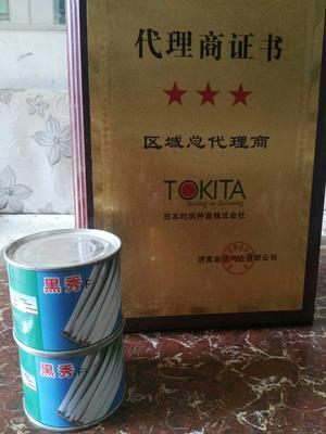 河南省南阳市宛城区日本钢葱种子 ≥97% 原种(亲本)