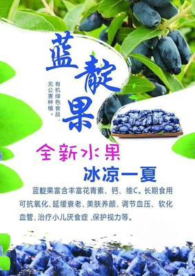 黑龙江省牡丹江市海林市野生蓝靛果 1g以下