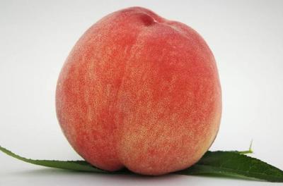 北京平谷区红油桃 4两以上 55mm以上