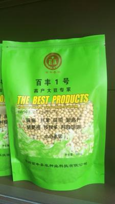 河南省郑州市新郑市豆角种子 ≥95%