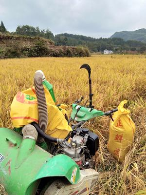 湖南省湘西土家族苗族自治州永顺县其它农机