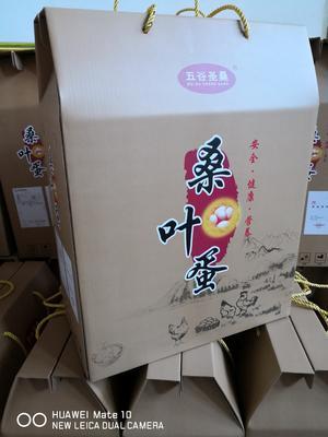 河北省石家庄市正定县桑叶蛋 食用 礼盒装