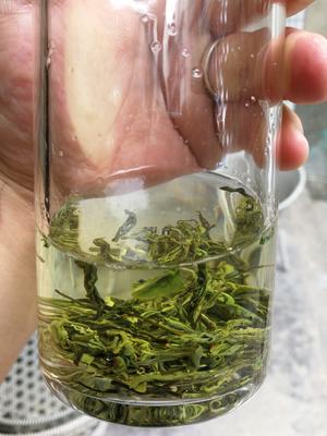 四川省成都市成华区生态直条茶 散装 一级