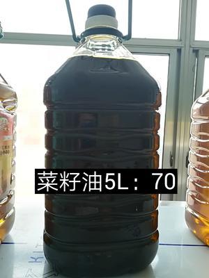 山东省滨州市无棣县自榨纯菜籽油 4.5-5L